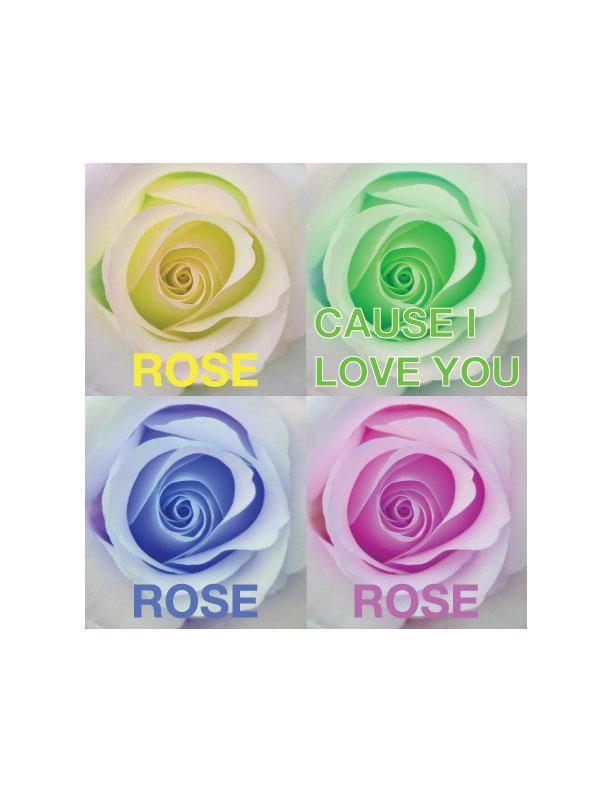 rosecymklove