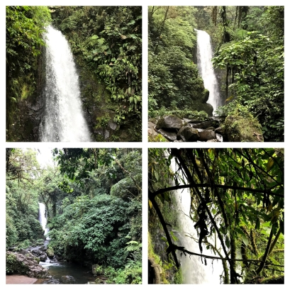 I got awesome pics of the La Paz Waterfall. What is wonderful about the waterfall is that there are steps. You do not have to trudge through all of the rocks. You can just take the trail that has a place for you to hold on to.